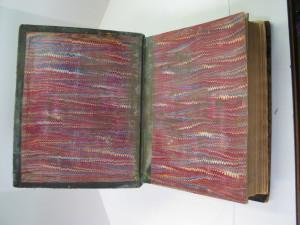 Moldy Bible inner hinge