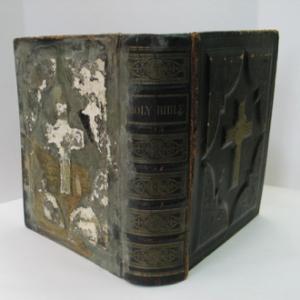 moldy book